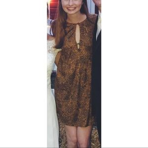 Long sleeve brown and black dress